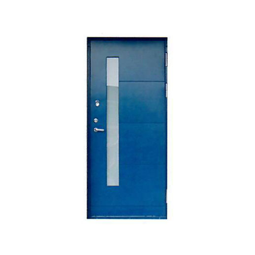 Metal door RL-2