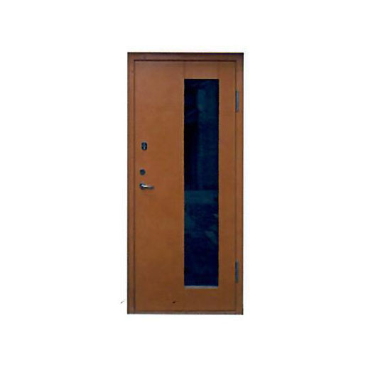 Metal door RL-24