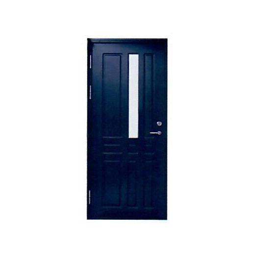 Metal door RL-6